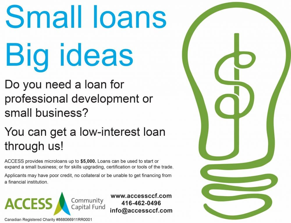 ACCESS-Small Loans Big Ideas